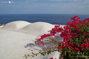 pantelleria (1)