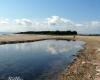 bronte_riserva-naturale-orientata-del-fiume-simeto