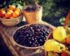 Sambuca di Sicilia - fonte Instagram © marco.amenta